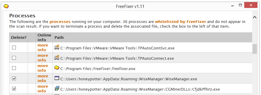wisemanager.exe and cfjdkPfhrU.exe processes