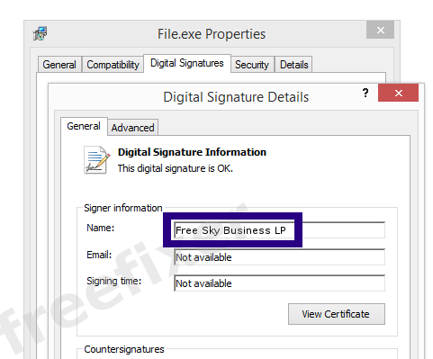 Screenshot of the Free Sky Business LP certificate