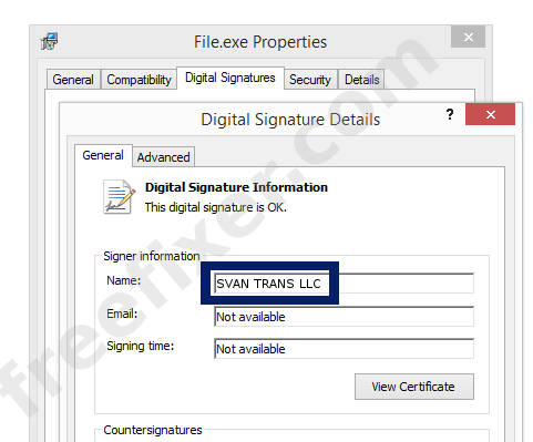 Screenshot of the SVAN TRANS LLC certificate
