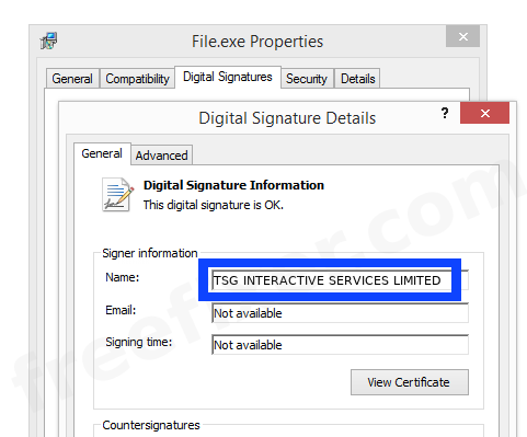 Screenshot of the TSG INTERACTIVE SERVICES LIMITED certificate
